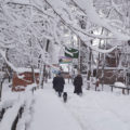 Kashmir, the snowy abode to soothe you