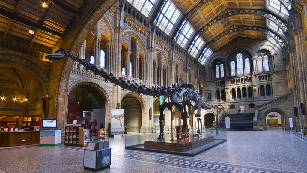 Our Exciting Day at London's Natural History Museum