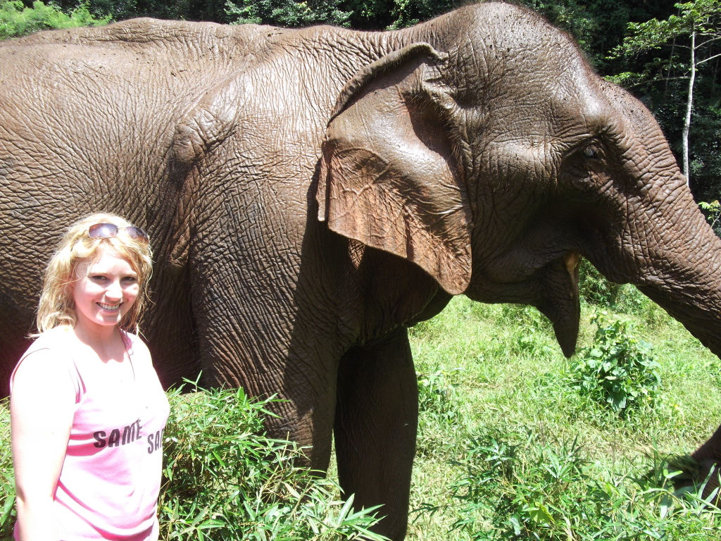 Up close and personal with elephants in Cambodia