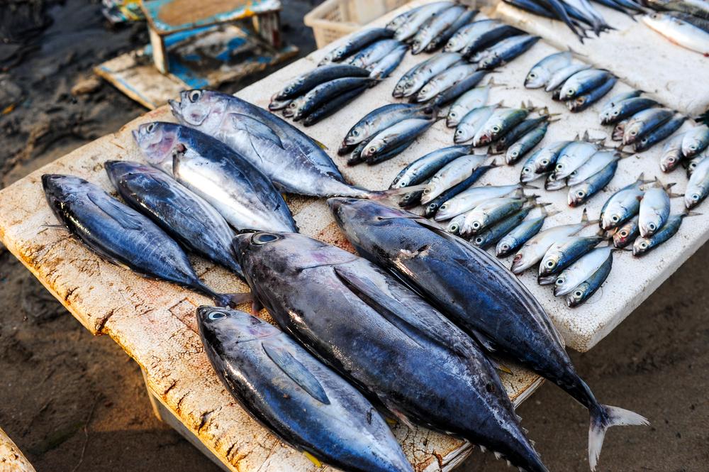 batam-fish-stall